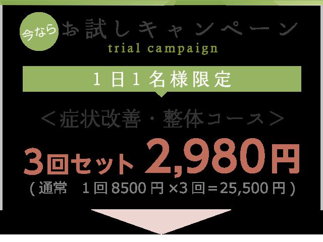 今だけお試しキャンペーン2980円
